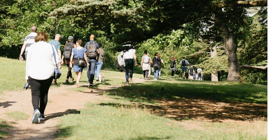 Netwalking – Stanmer Park (members only, in person)