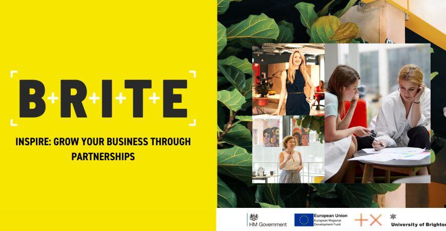 Workshop: Grow your Business through Partnerships