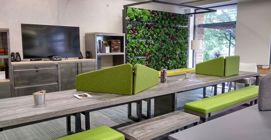 What is Biophilic Office Design?